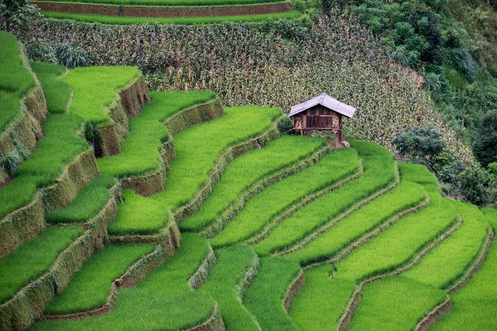 viaggio in Vietnam 4