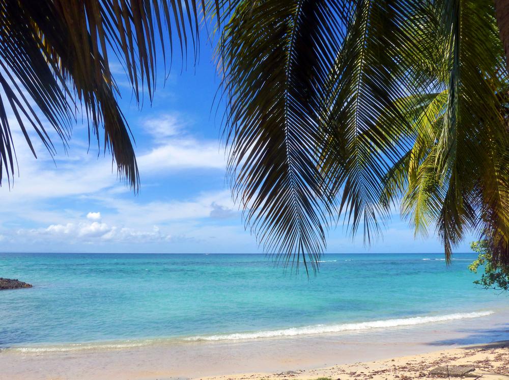 La Martinica Caraibi