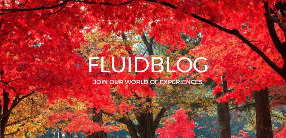 Fluidblog