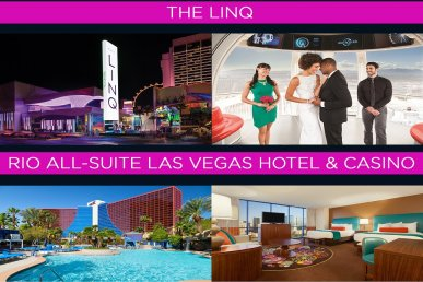 Have fun in Las Vegas: The Linq & Rio Hotel