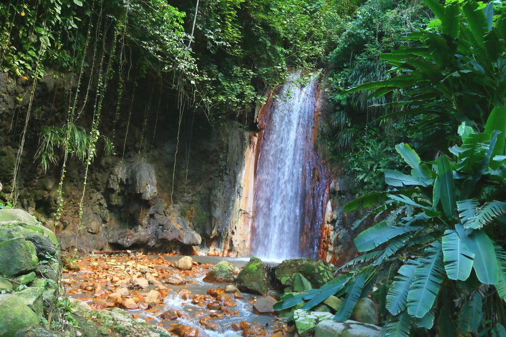 Saint Lucia Nature e Wildlife