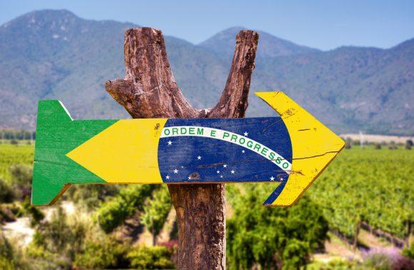 Olio e Vino del Minas Gerais