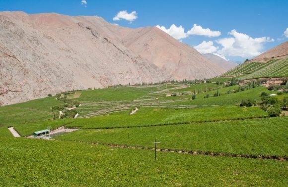 Viaggio in Cile vino e astronomia