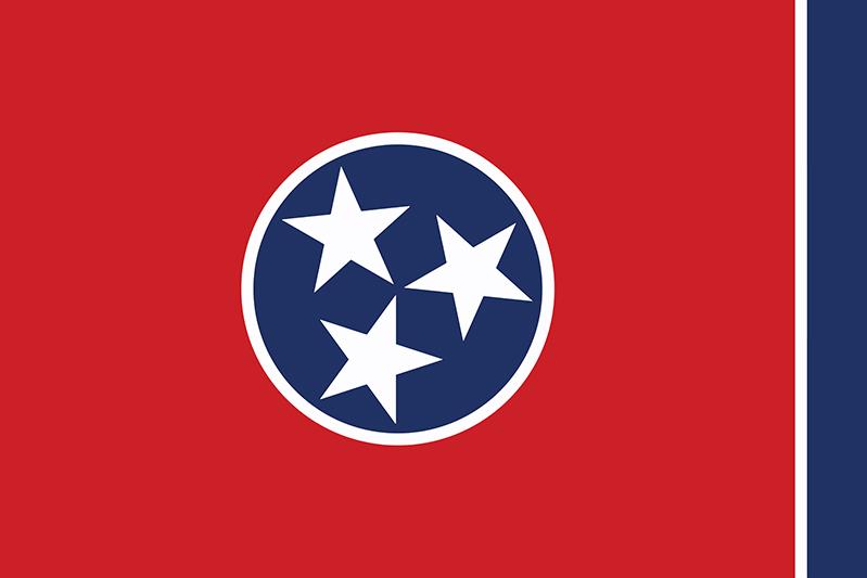 Viaggio nel South USA Tennessee Bandiera
