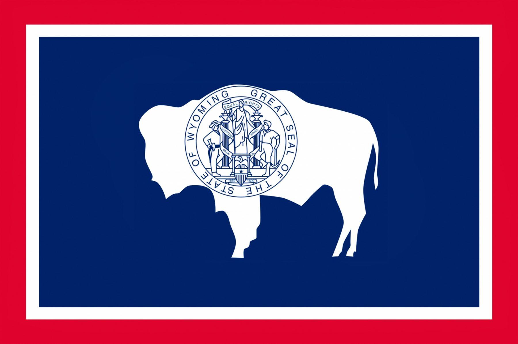 Viaggio nella Real America Wyoming Bandiera