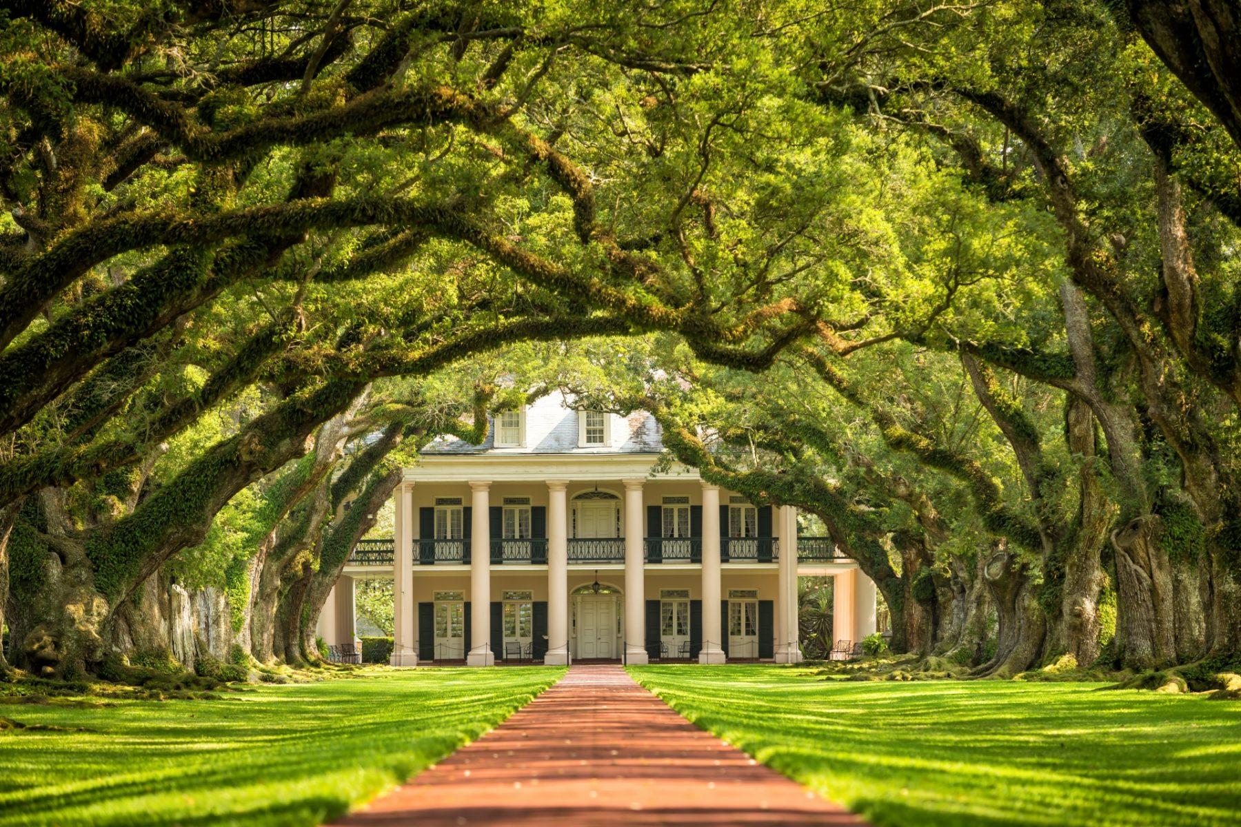 Le piantagioni della Louisiana Viaggio Oak Alley Plantation