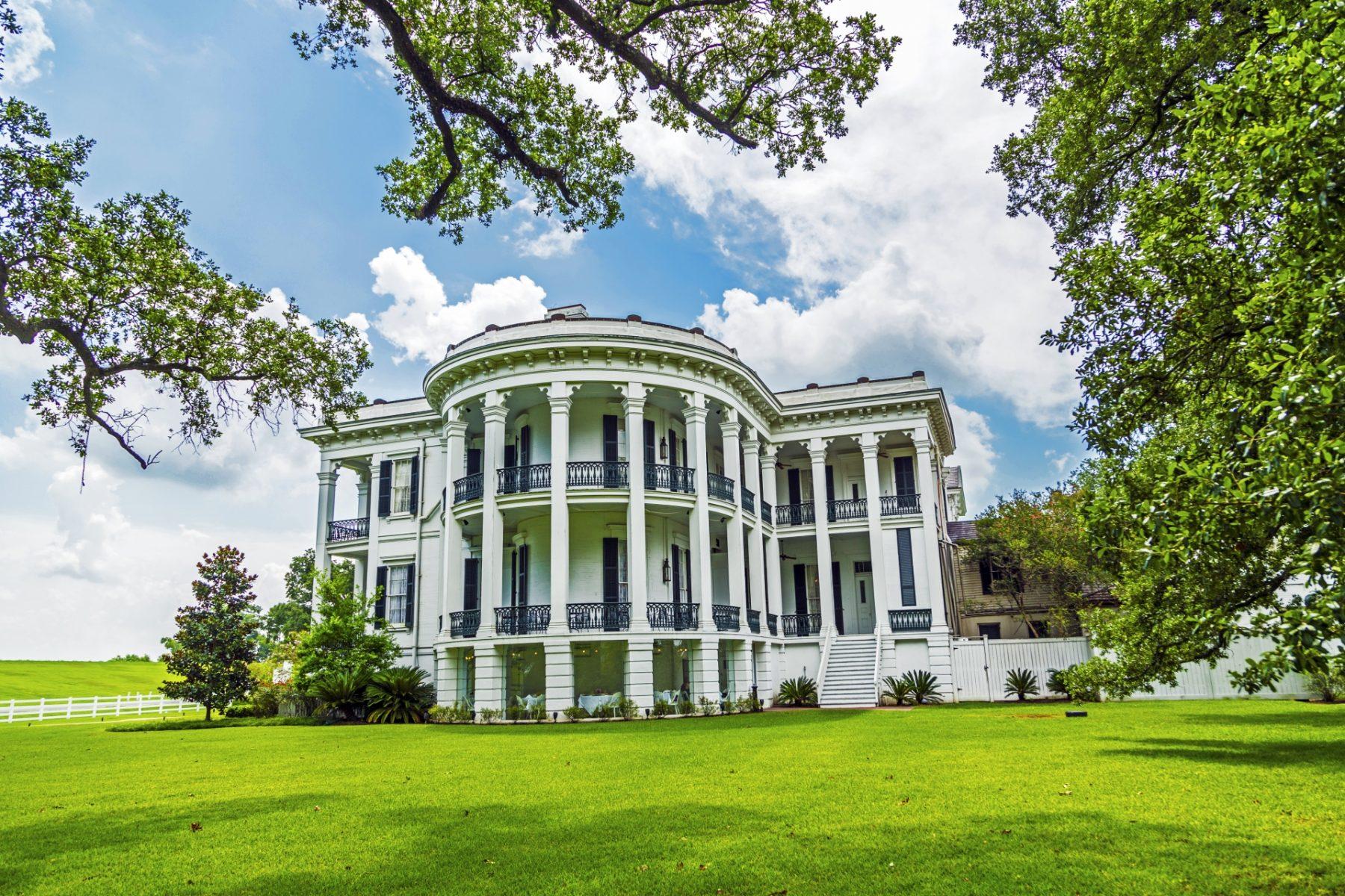 Viaggio in Louisiana tra piantagioni e cultura cajun Nottoway Plantation