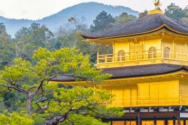 Viaggio in Giappone tra templi e grattacieli