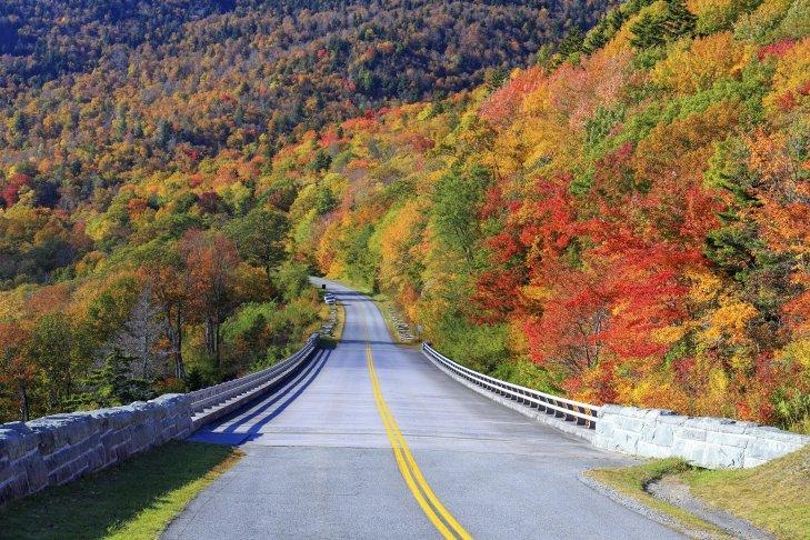 Viaggio lungo la Blue Ridge Parkway