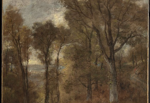 Tje Clark Art Institute. Woodland Scene Overlooking Dedham Vale