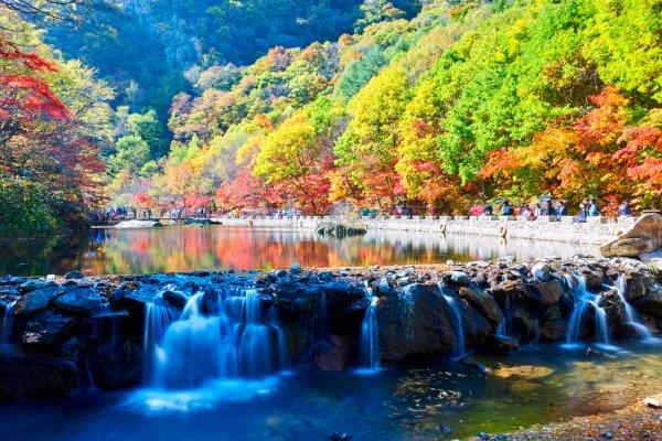 I foliage più spettacolari del mondo Fragrant Hills Foliage