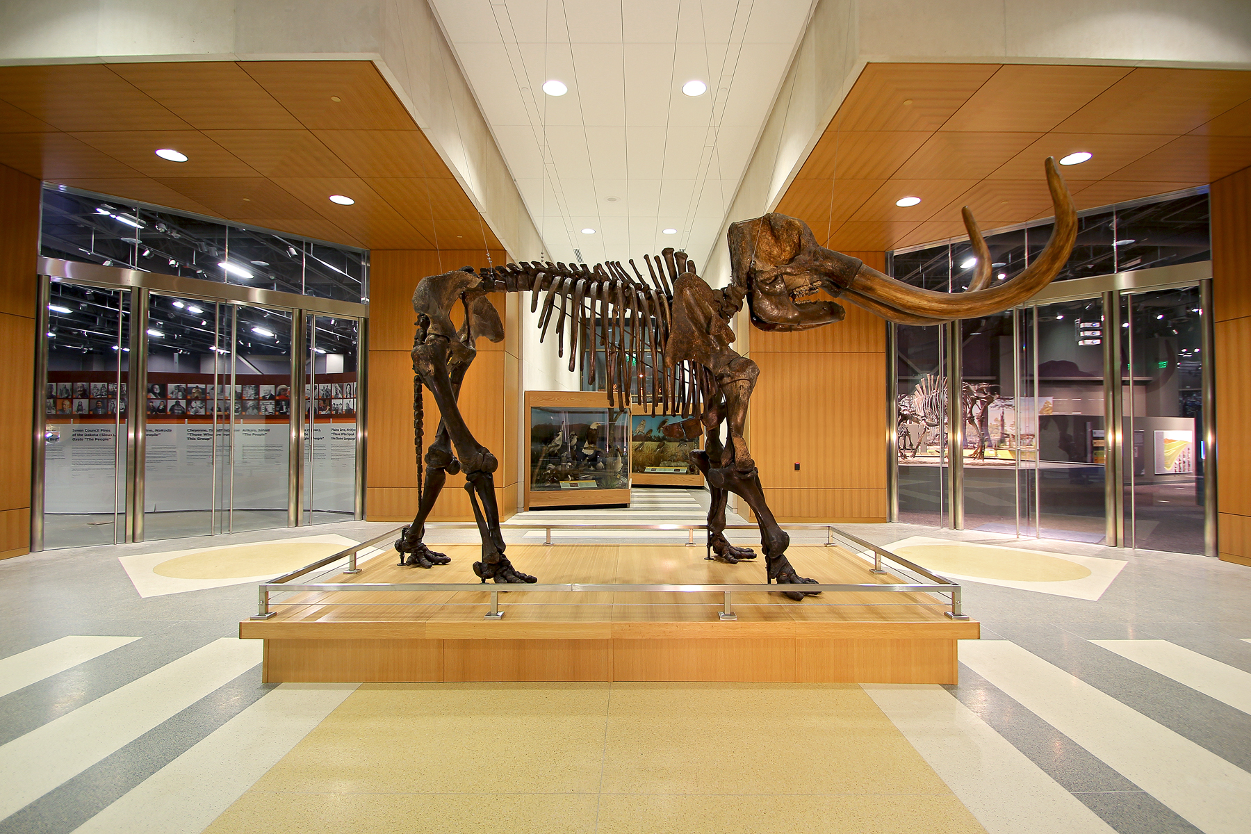 North Dakota Heritage Center and State Museum: il mastodonte d'ingresso