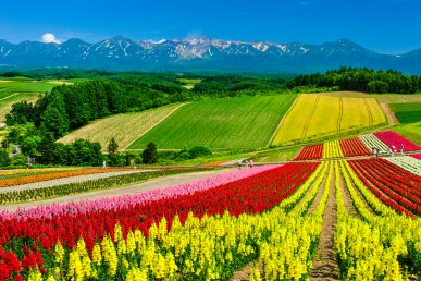 Giappone, Hokkaido: 4 stagioni per amarlo