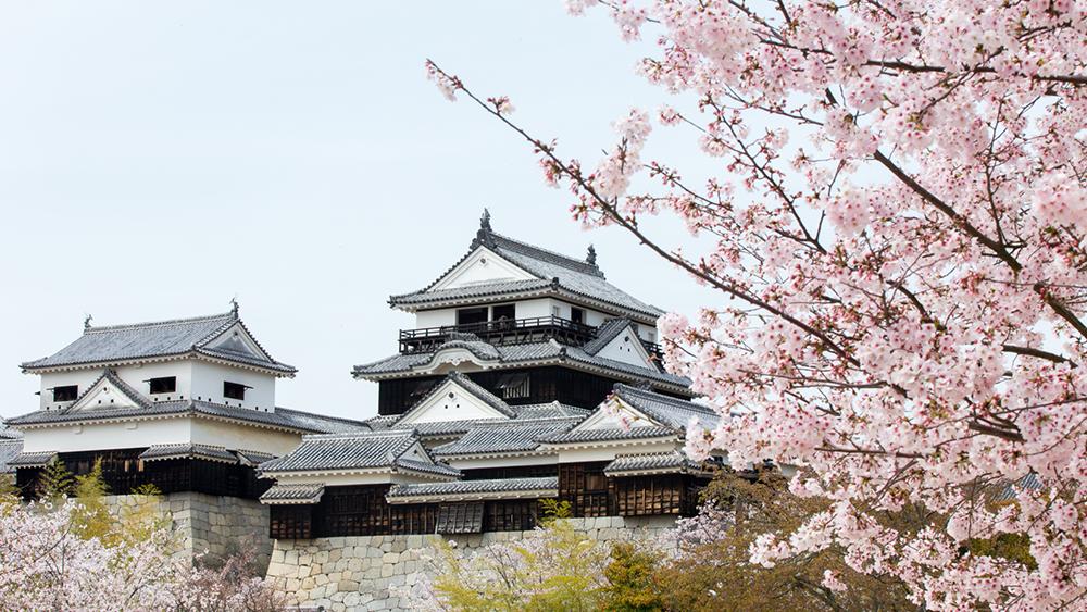 Shikoku copertina 2