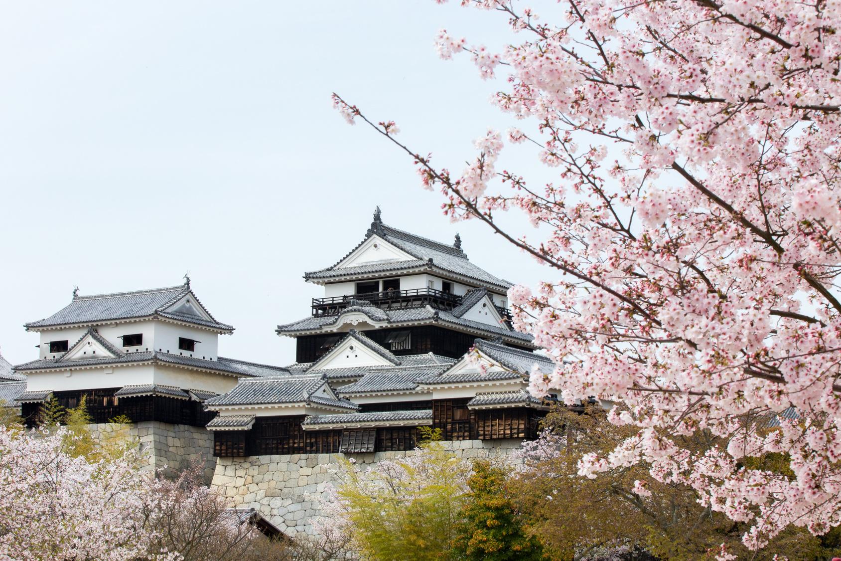 Shikoku copertina pagina