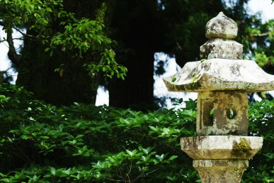 Giappone: 5 motivi per visitare lo Shikoku
