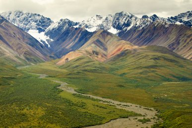 Strepitosa Alaska