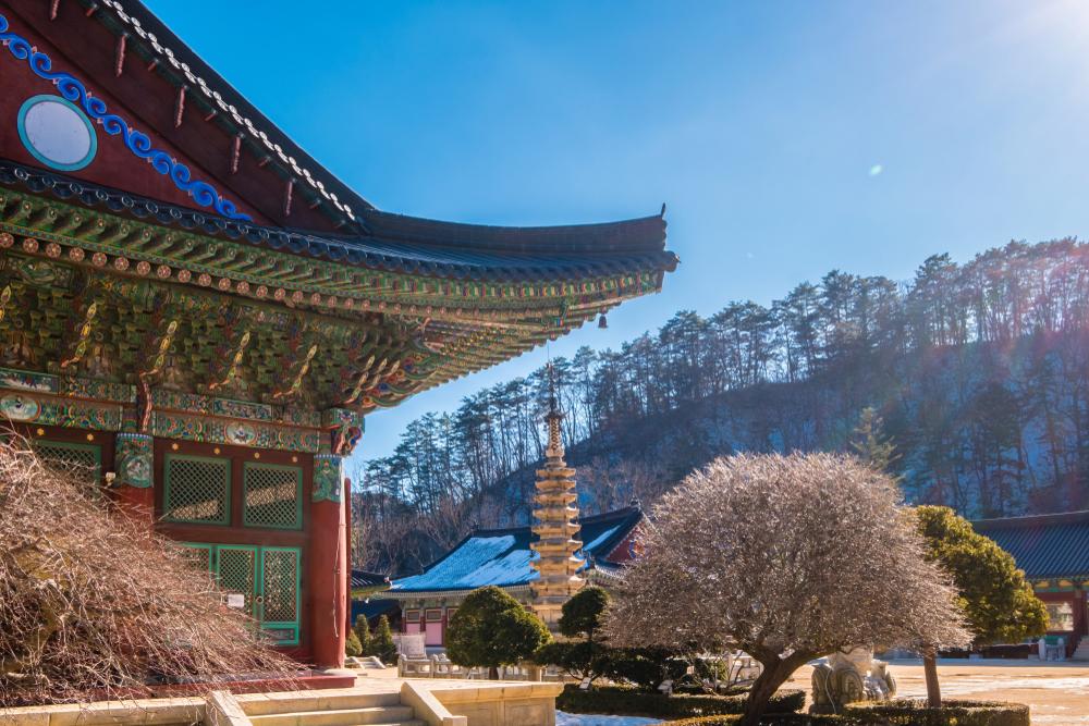 Olimpiadi invernali in Corea del Sud Woljeongsa
