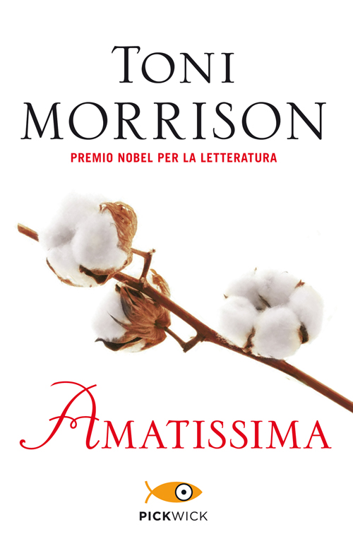 I libri sui Civil Rights: Amatissima
