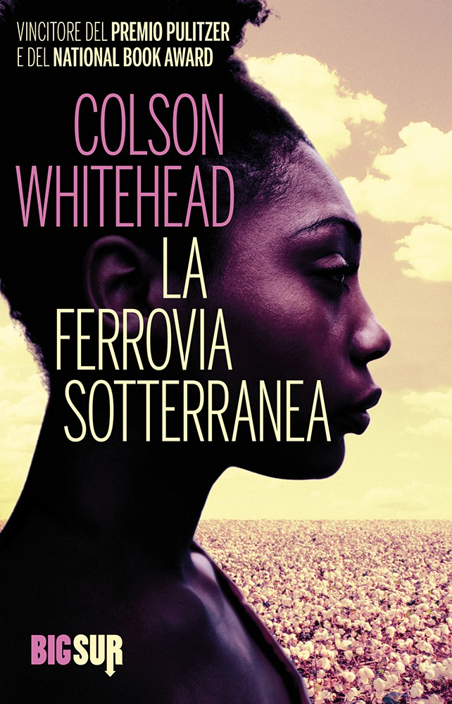 Libri sui Civil Rights: La Ferrovia Sotterranea