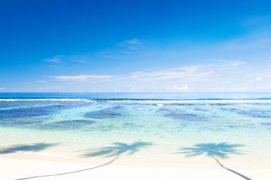 Isole Samoa: Upolu e Savaii