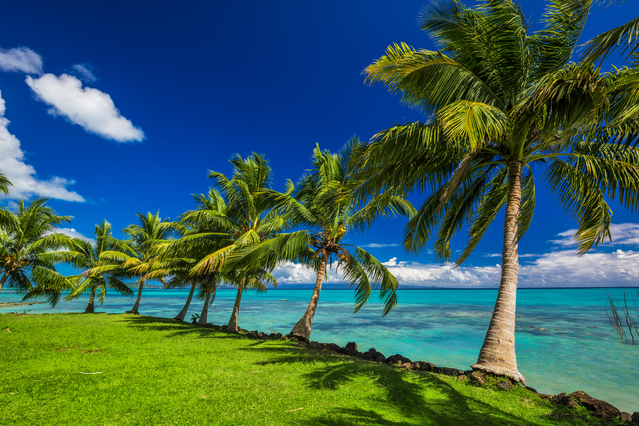 Tropical beach on north side of Samoa Island with palm trees